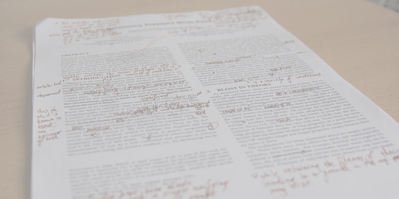 Kitzalet Como convertirte en un corrector de textos profesional 2 800x400 - Kitzalet Como convertirte en un corrector de textos profesional 2