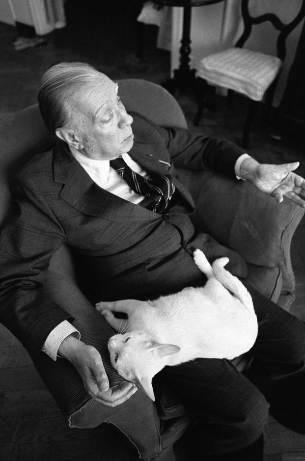 Kitzalet Los escritores y los gatos Jorge Luis Borges - Los escritores y los gatos: una relación creativa