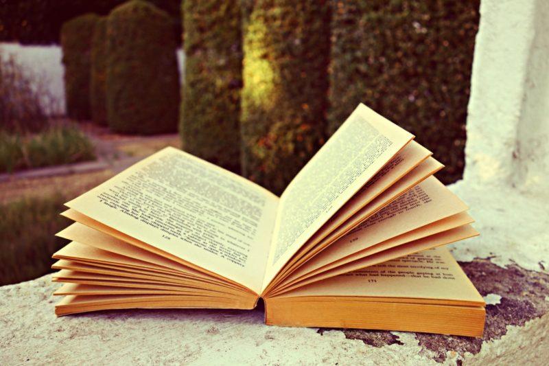 Kitzalet Escribir para ti o para tu publico libro abierto 800x533 - ¿Escribir para ti o para tu público?