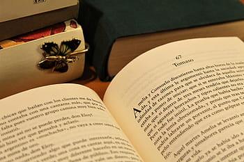 Kitzalet 10 consejos para escribir una biografía perfecta 1 1 - Kitzalet 10 consejos para escribir una biografía perfecta 1 1